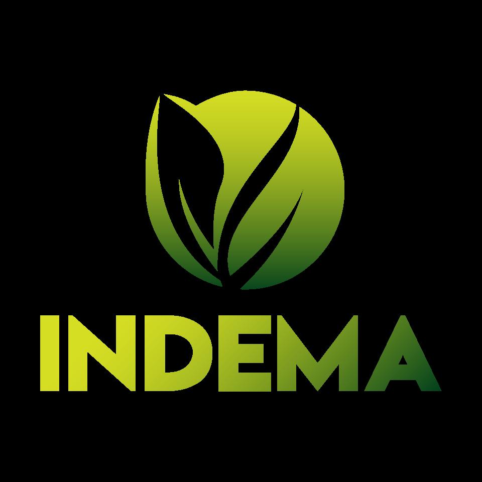 INSTITUTO NACIONAL DE ENERGIAS RENOVÁVEIS E MEIO AMBIENTE